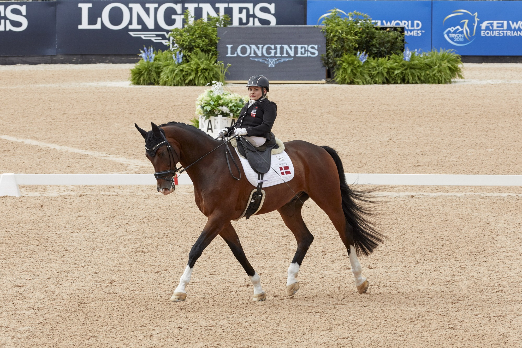 Danish Paralympian Kaastrup takes her first global crown at World Equestrian Games