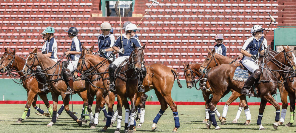 Polo officials claim showcase at Buenos Aires 2018 demonstrated Olympic credentials