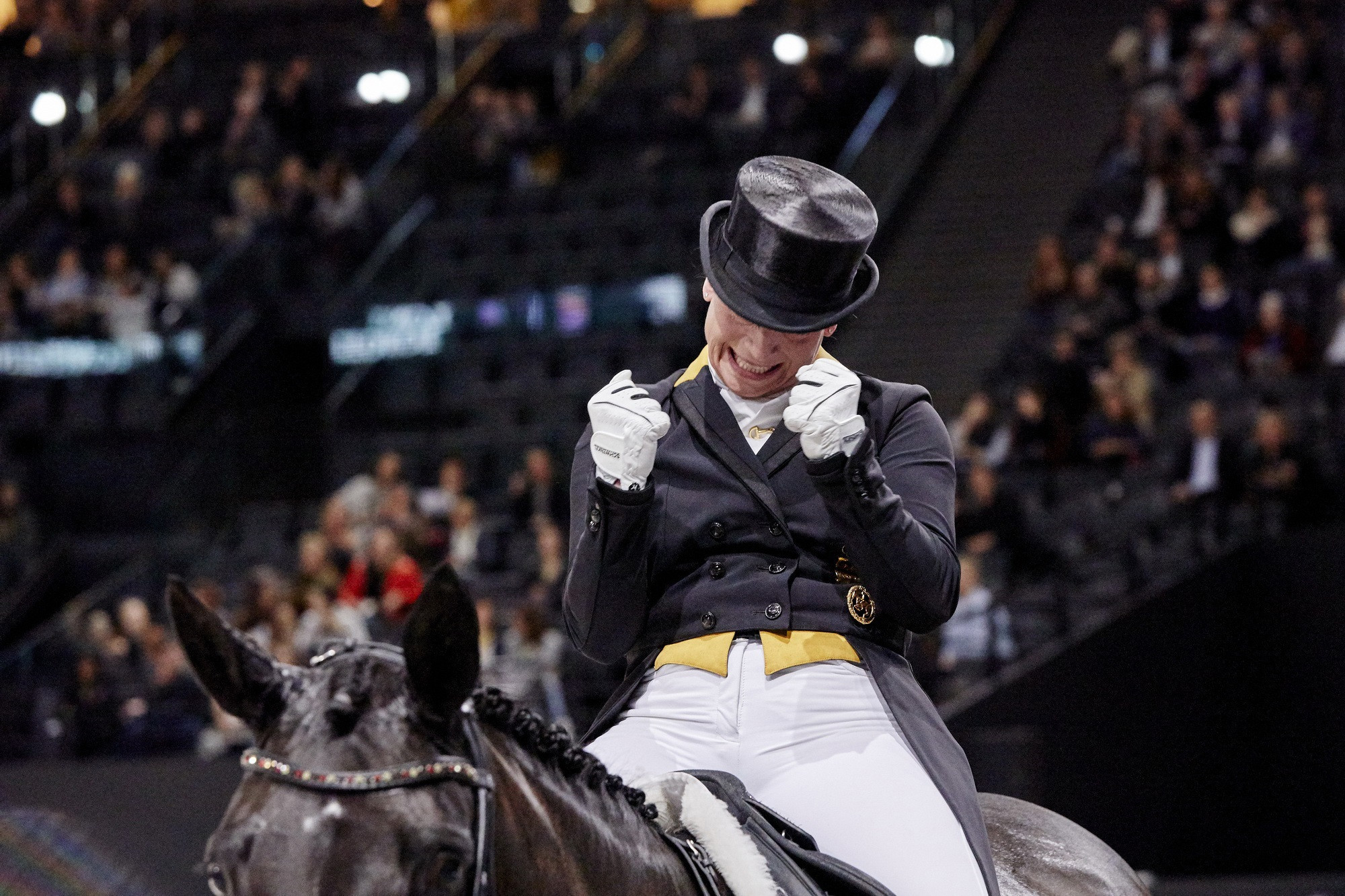 Herning to play host with FEI Dressage World Cup Western European League season set to begin