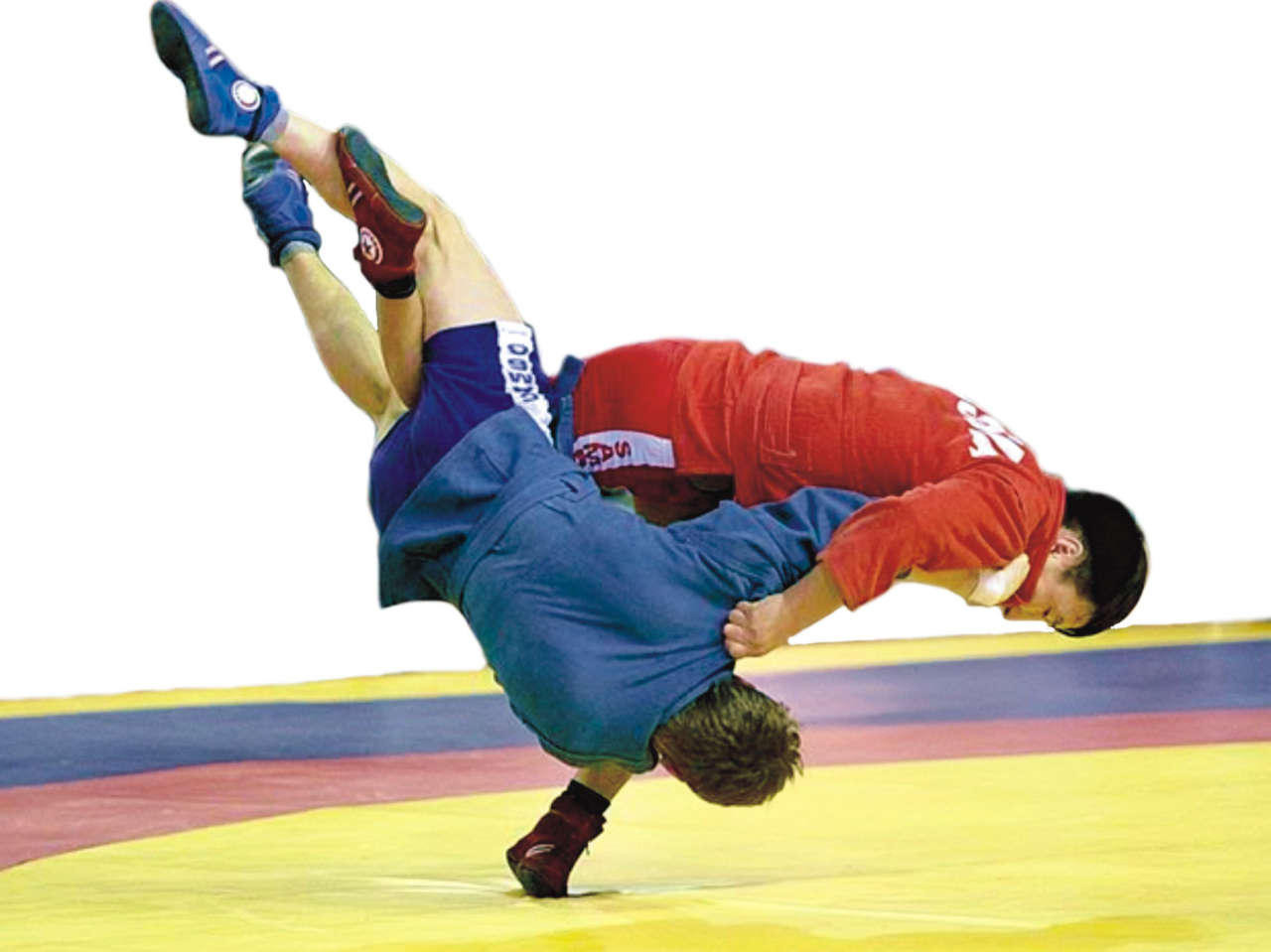 Japan Sambo Championships and Russian President's Cup still planned for February