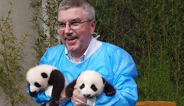 In 2016, the IOC donated $50,000 to a giant panda breeding centre in Sichuan Province in China ©IOC