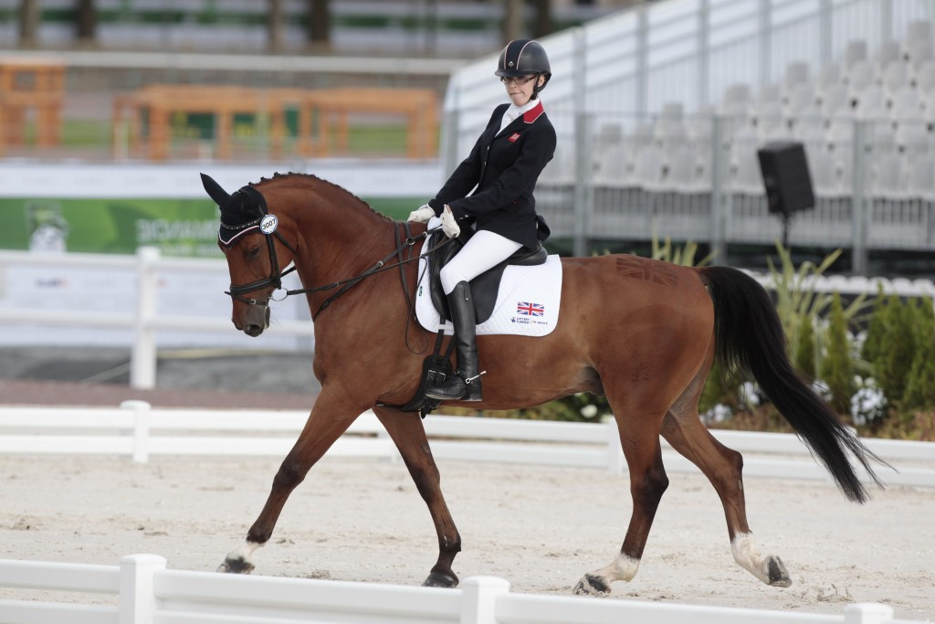 Paralympic and world champion winning equestrian horse dies