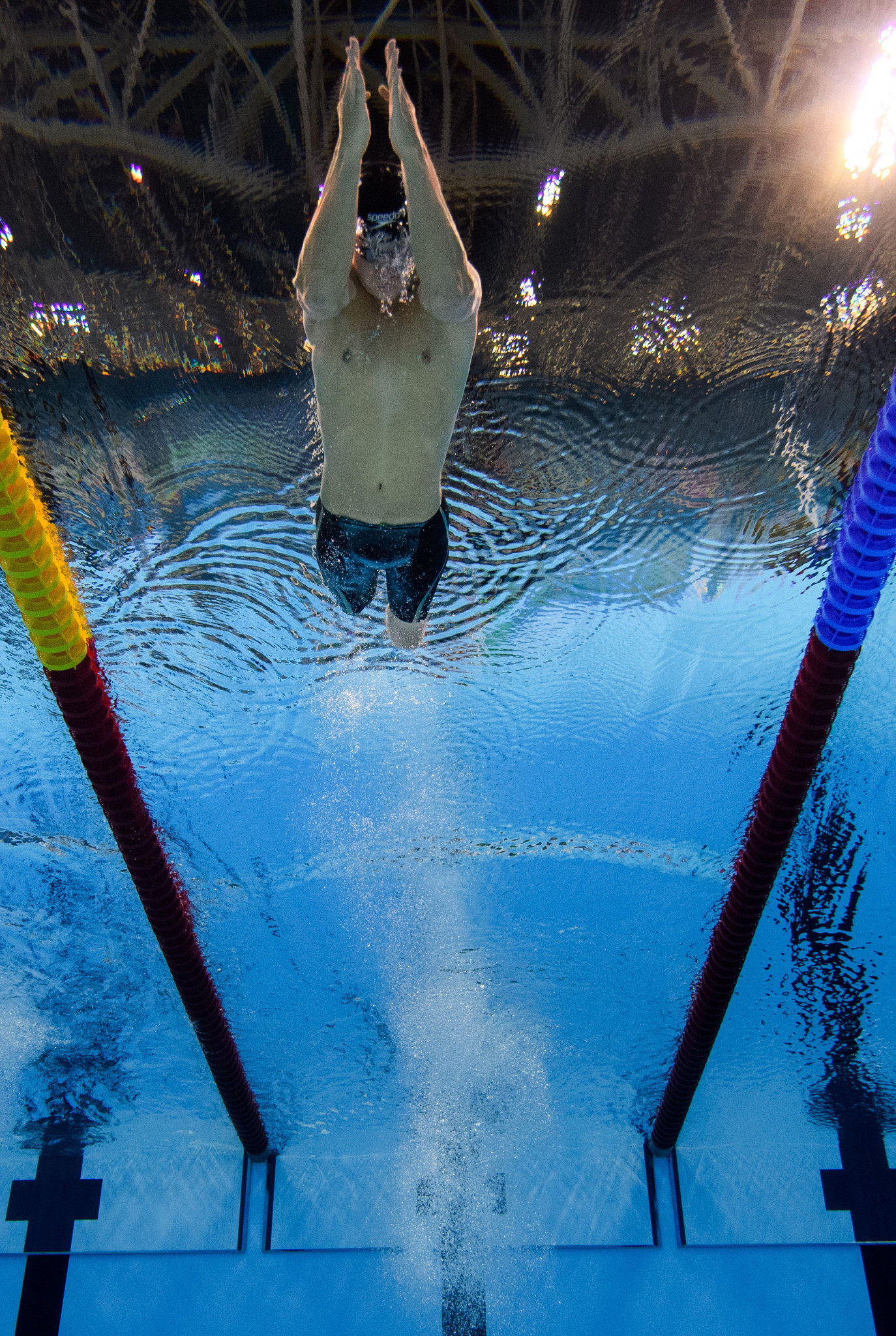 Tai and Ponce crowned champions of World Para Swimming World Series