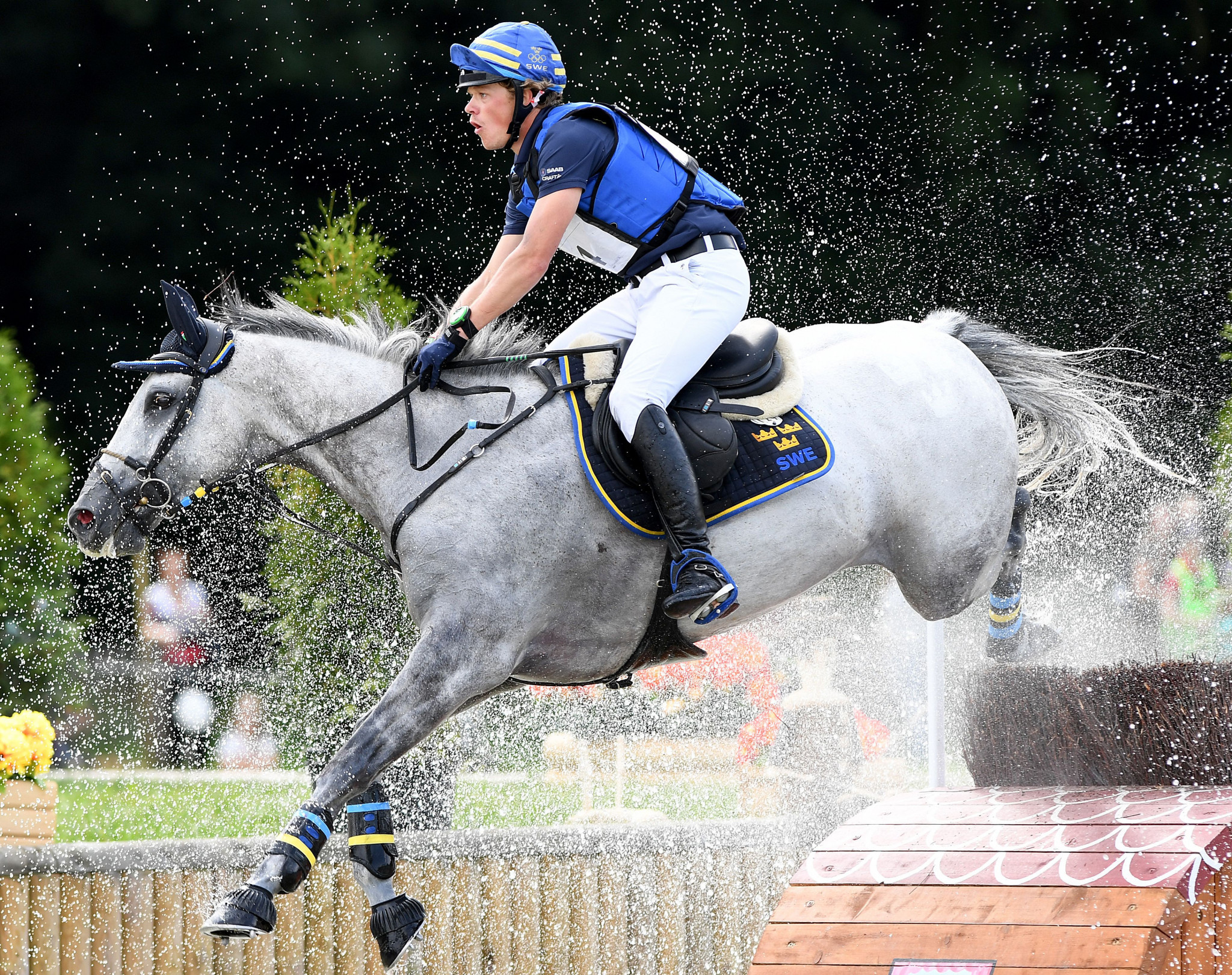 Sweden lead way after first part of dressage at FEI Eventing Nations Cup