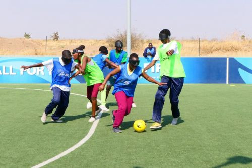 Coaches and players attended the workshop in the Bulawayo province ©IBSA