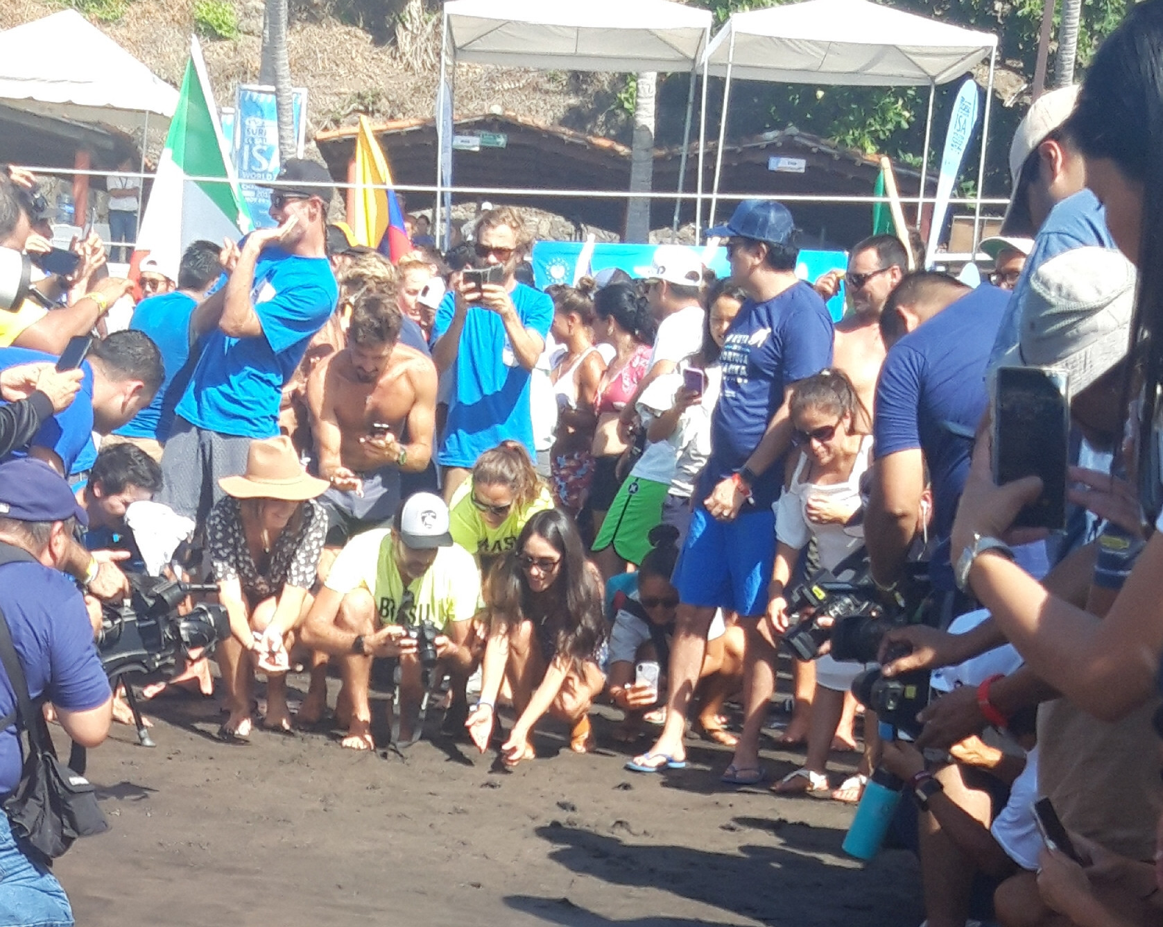 Salvadoran conservation efforts showcased as surfers release 200 sea turtles to ocean