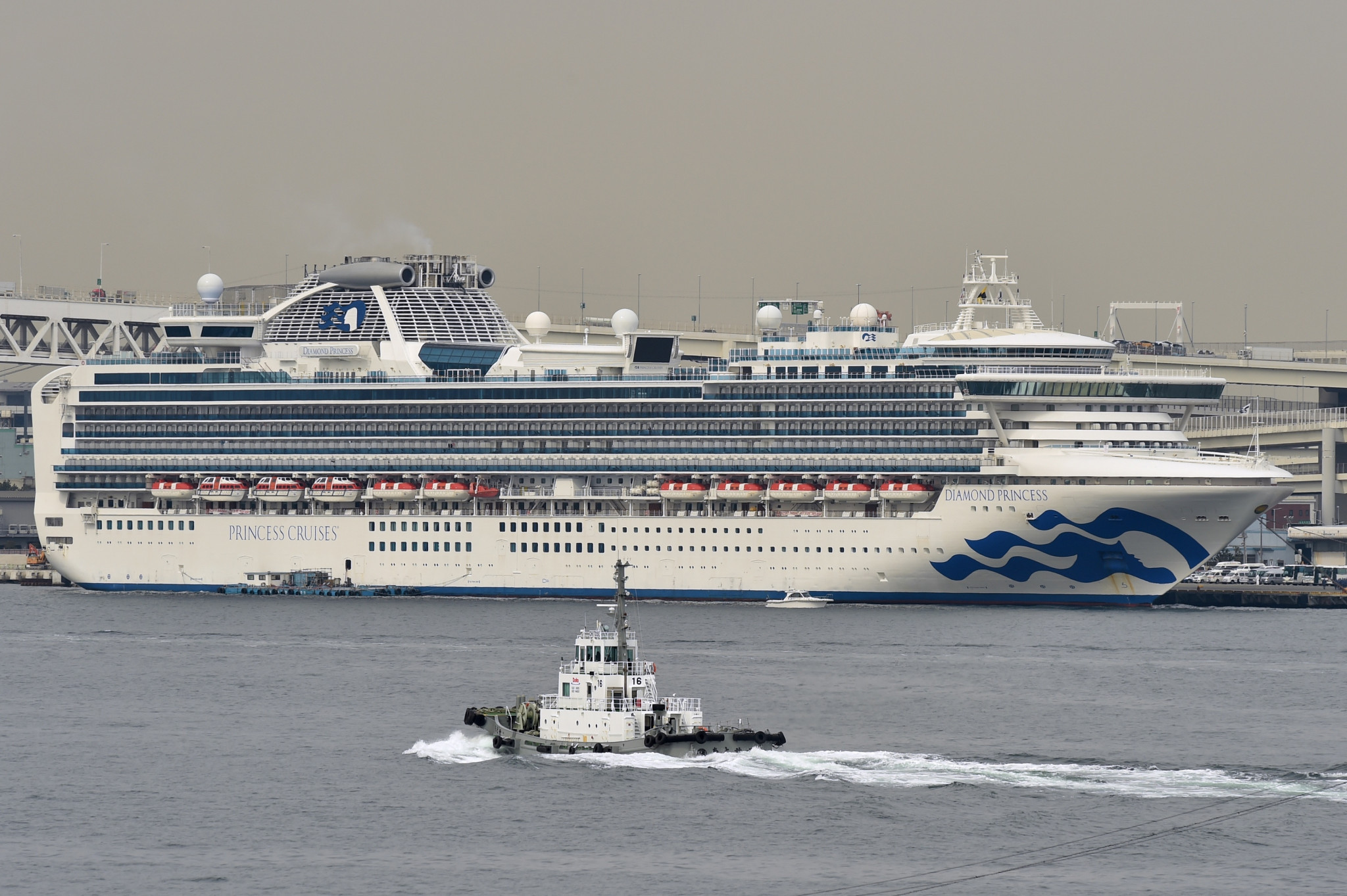 Over 600 people on the Diamond Princess have been diagnosed with coronavirus, while  two people in their eighties have died from it ©Getty Images
