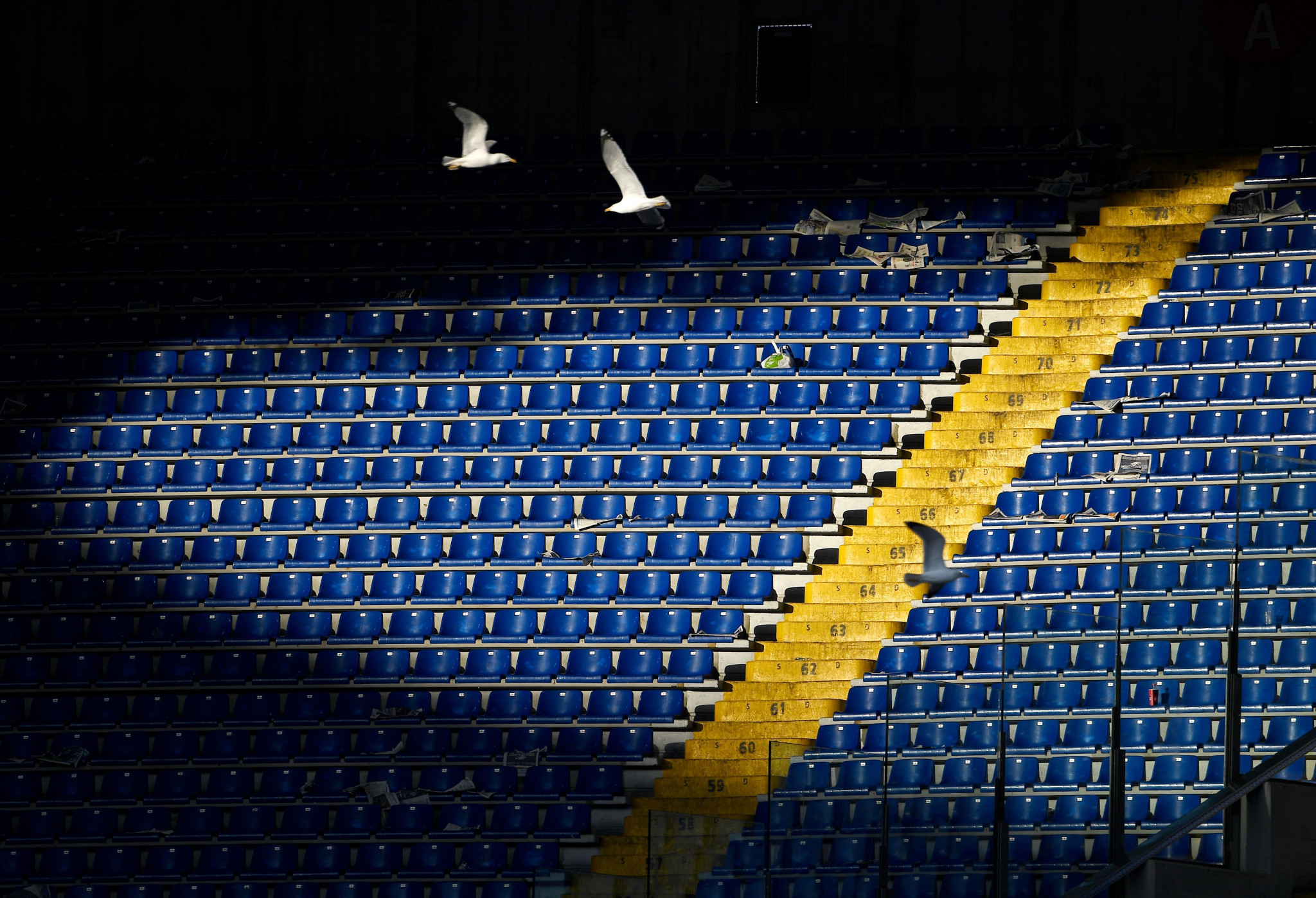 Italian Olympic Committee suspends all sport in country amid coronavirus outbreak