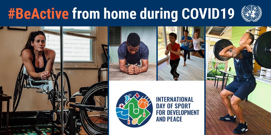 Sporting bodies show support for International Day of Sport for Development and Peace