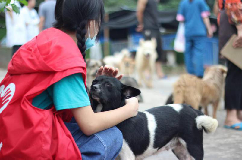 500,000 now registered to be Chengdu 2021 volunteers