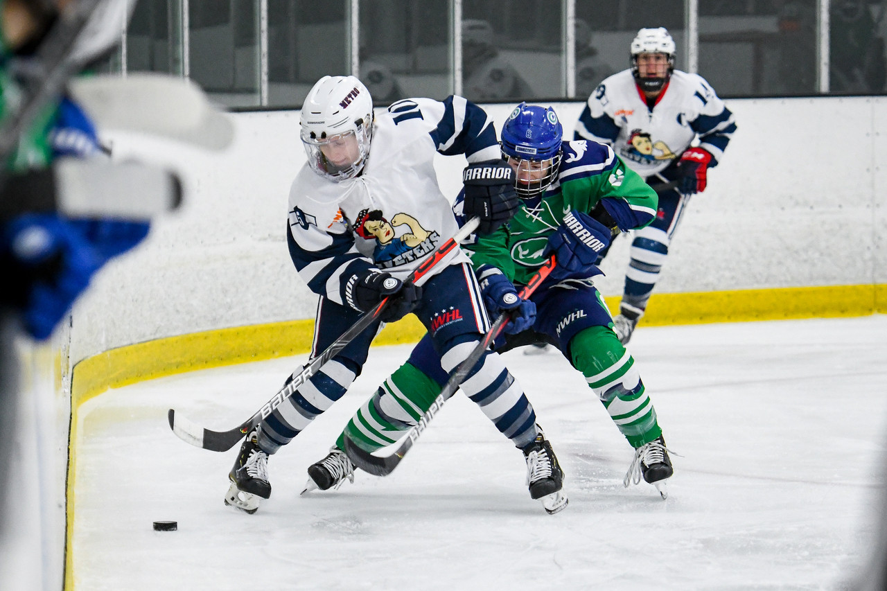 NWHL to play upcoming season in bubble in Lake Placid