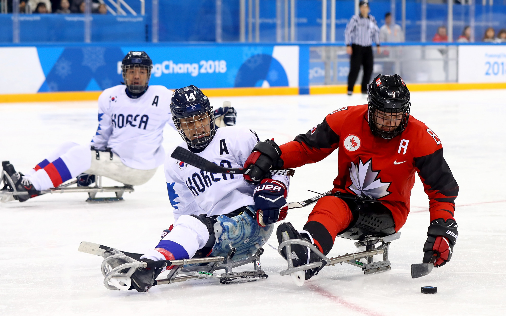 Canadian Para ice hockey captain Tyler McGregor is set to chat to Kevin Rempel in the first of the Instagram Live sessions ©Getty Images