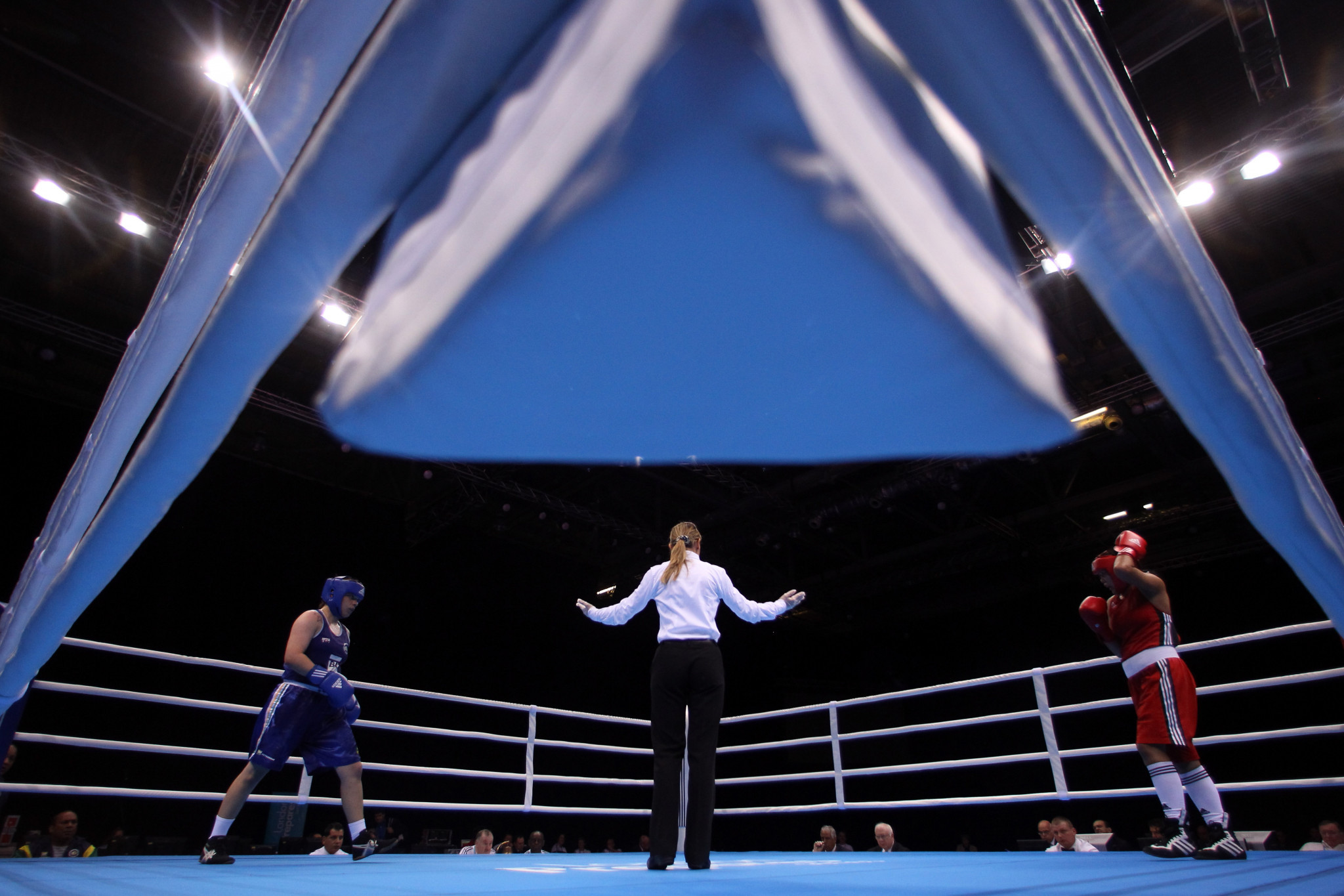 Committee chairs including six-time world champion Kom and ex-referee Roberts appointed by AIBA