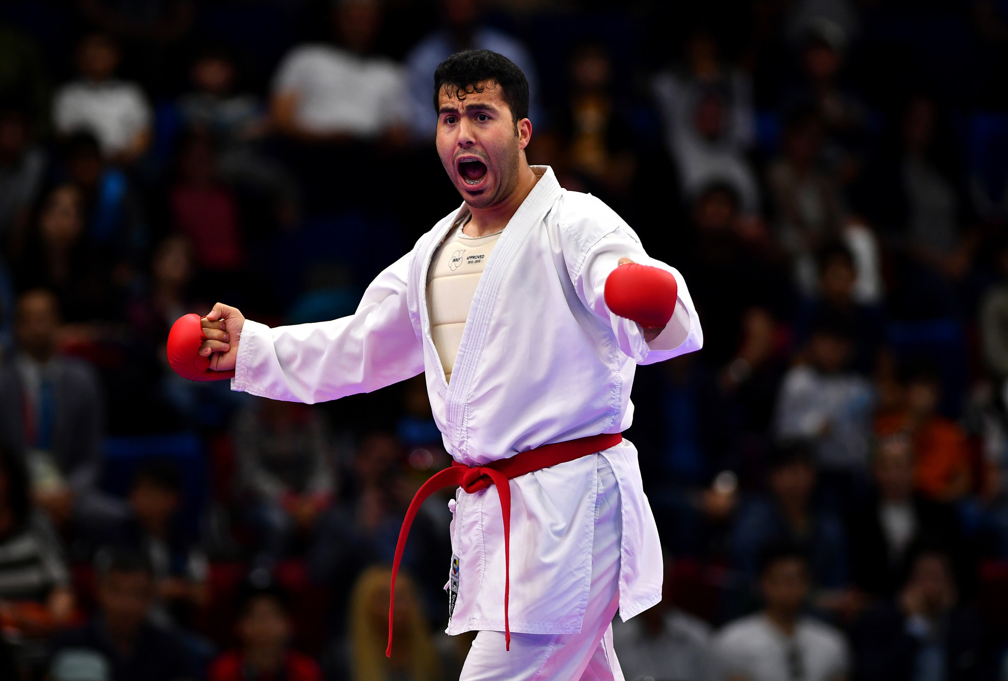 Turkey claim three golds on finals day of Karate-1 Premier League in Istanbul