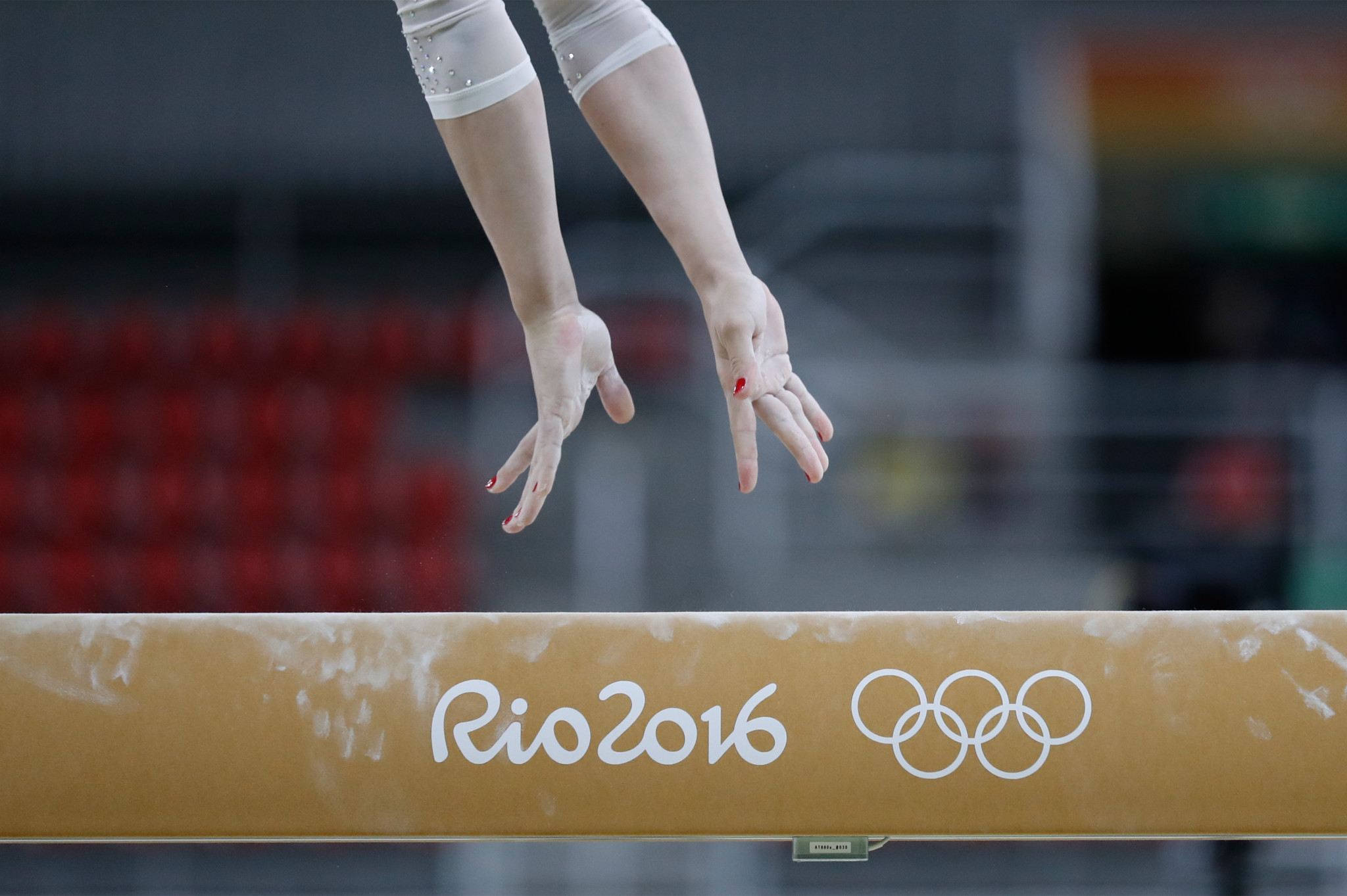 Dave Brubaker led the Canadian gymnastics team at Rio 2016 ©Getty Images