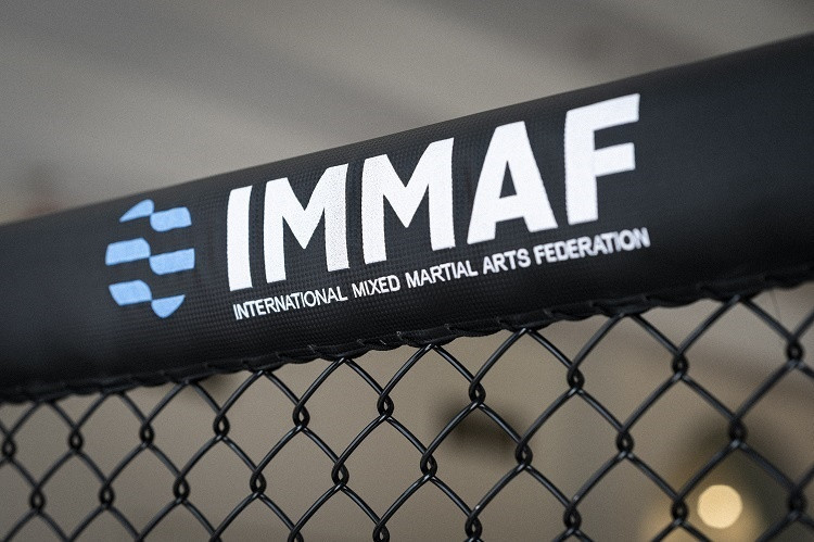 The IMMAF has welcomed the Council of Europe's recommendation ©IMMAF