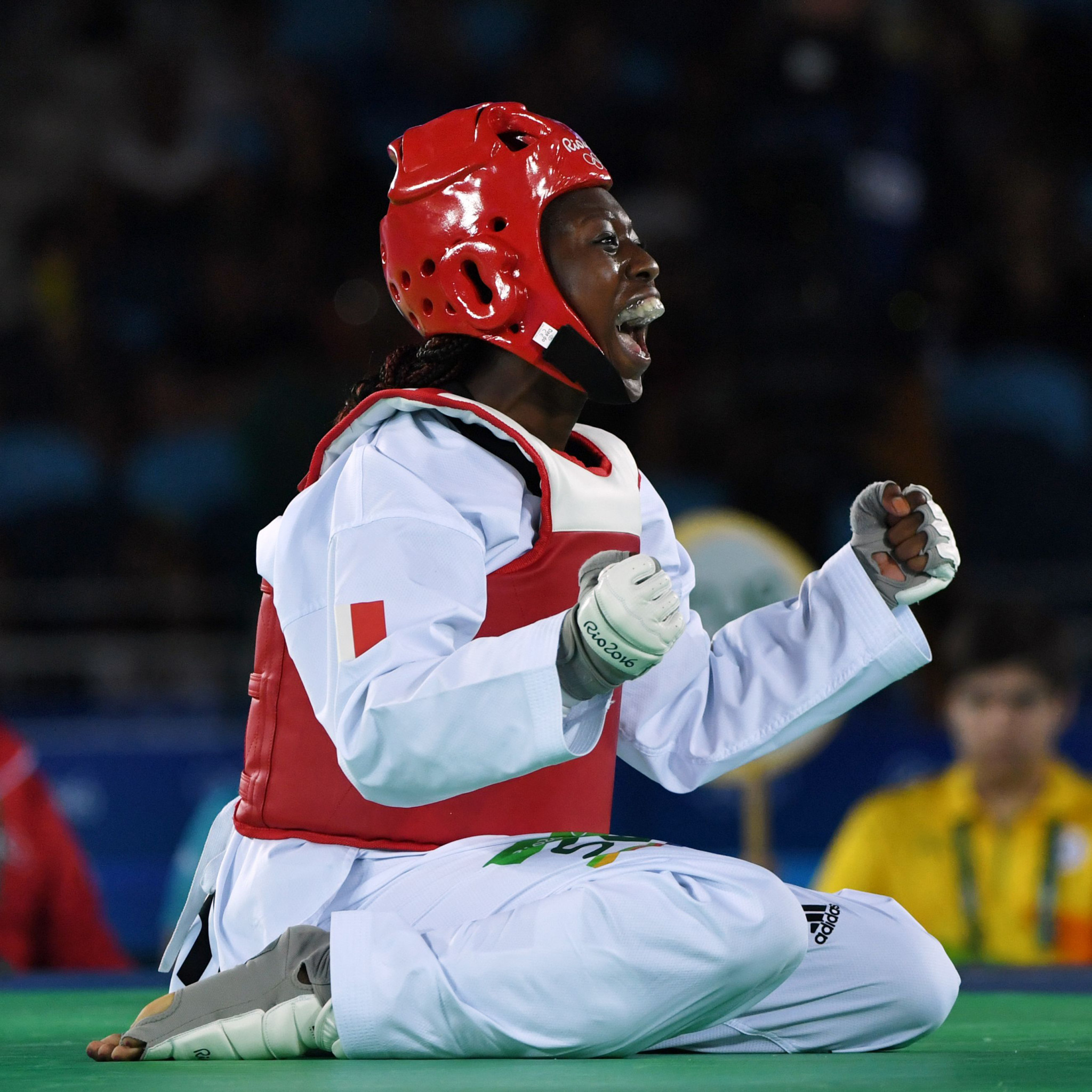 Haby Niaré - the scorpion kicker heads into retirement