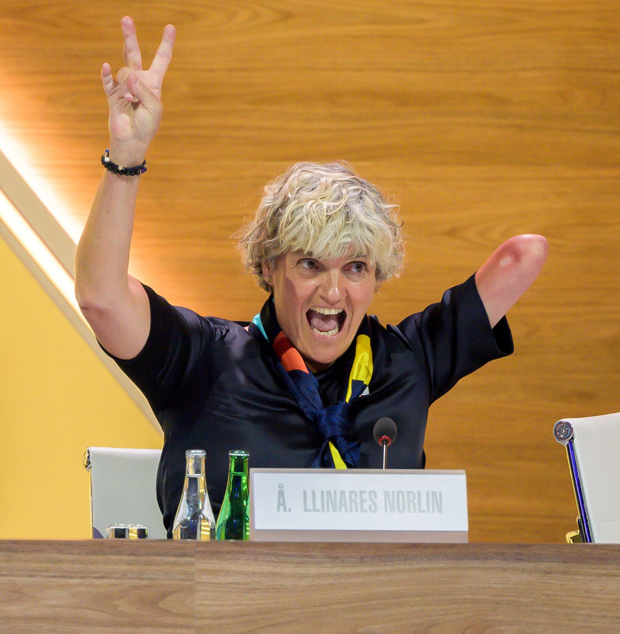 Norlin re-elected as Swedish Paralympic Committee President