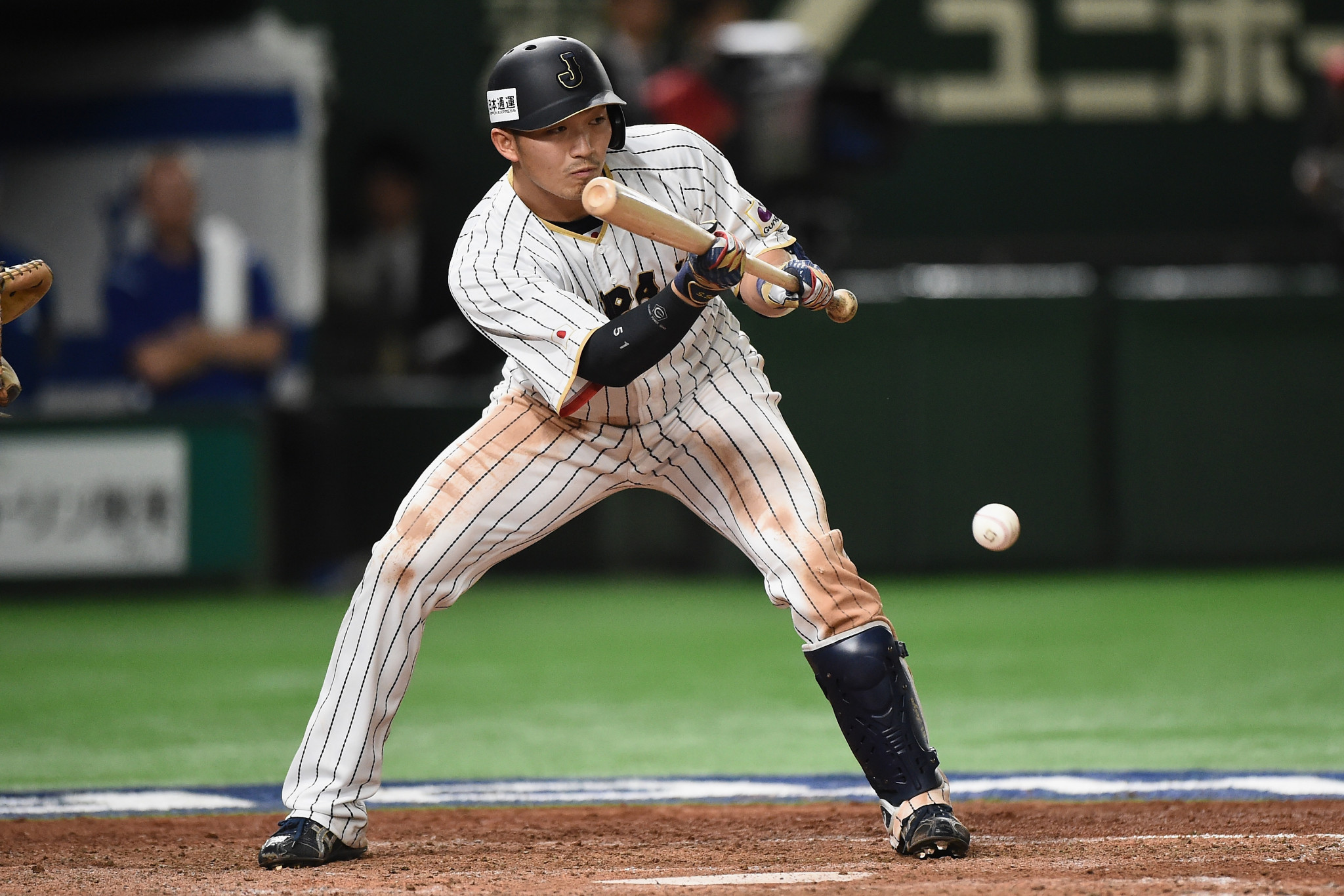 Japan will be hoping for more offensive heroics from Seiya Suzuki, MVP at the 2019 WBSC Premier12 tournament ©Getty Images