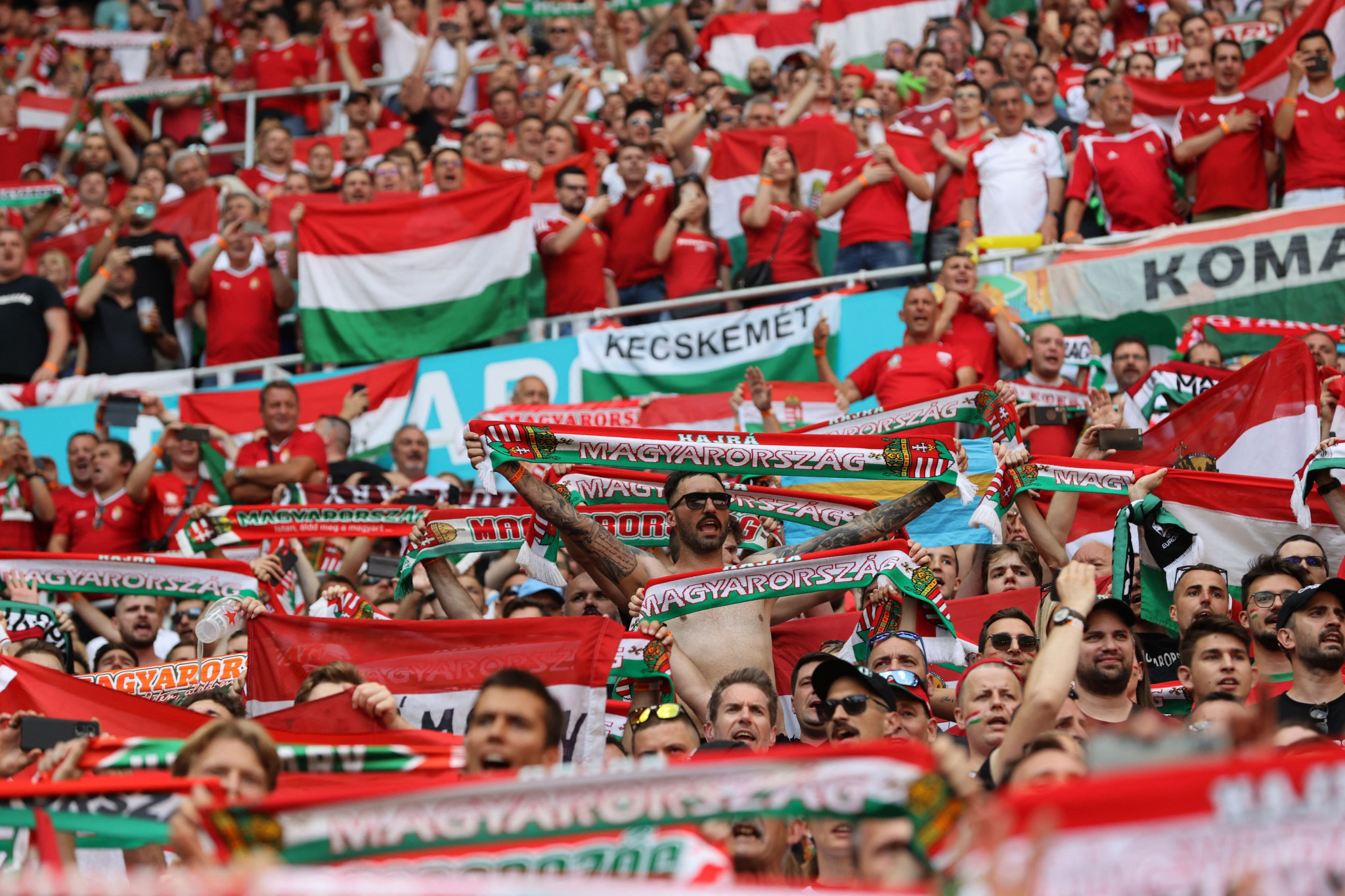 A capacity crowd saw Hungary draw with France ©Getty Images