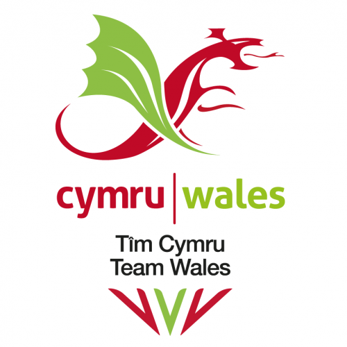 Commonwealth Games Wales appoints chief medical officer