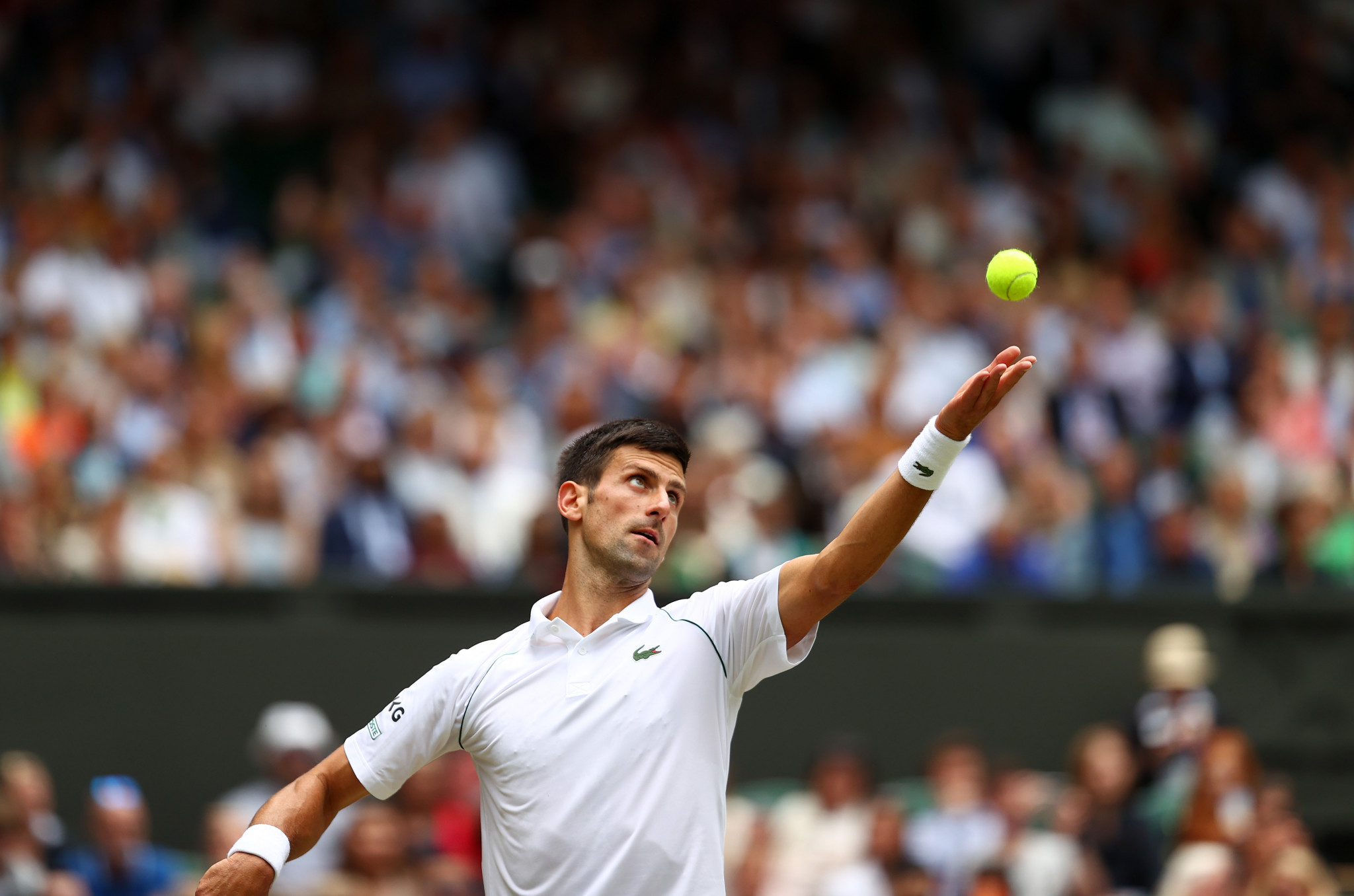 Novak Djokovic has won 12 sets in a row and is into the Wimbledon quarter-finals ©Getty Images