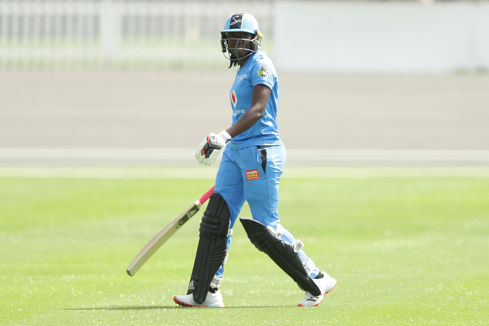 Taylor and Al Hasan named ICC Players of the Month for July