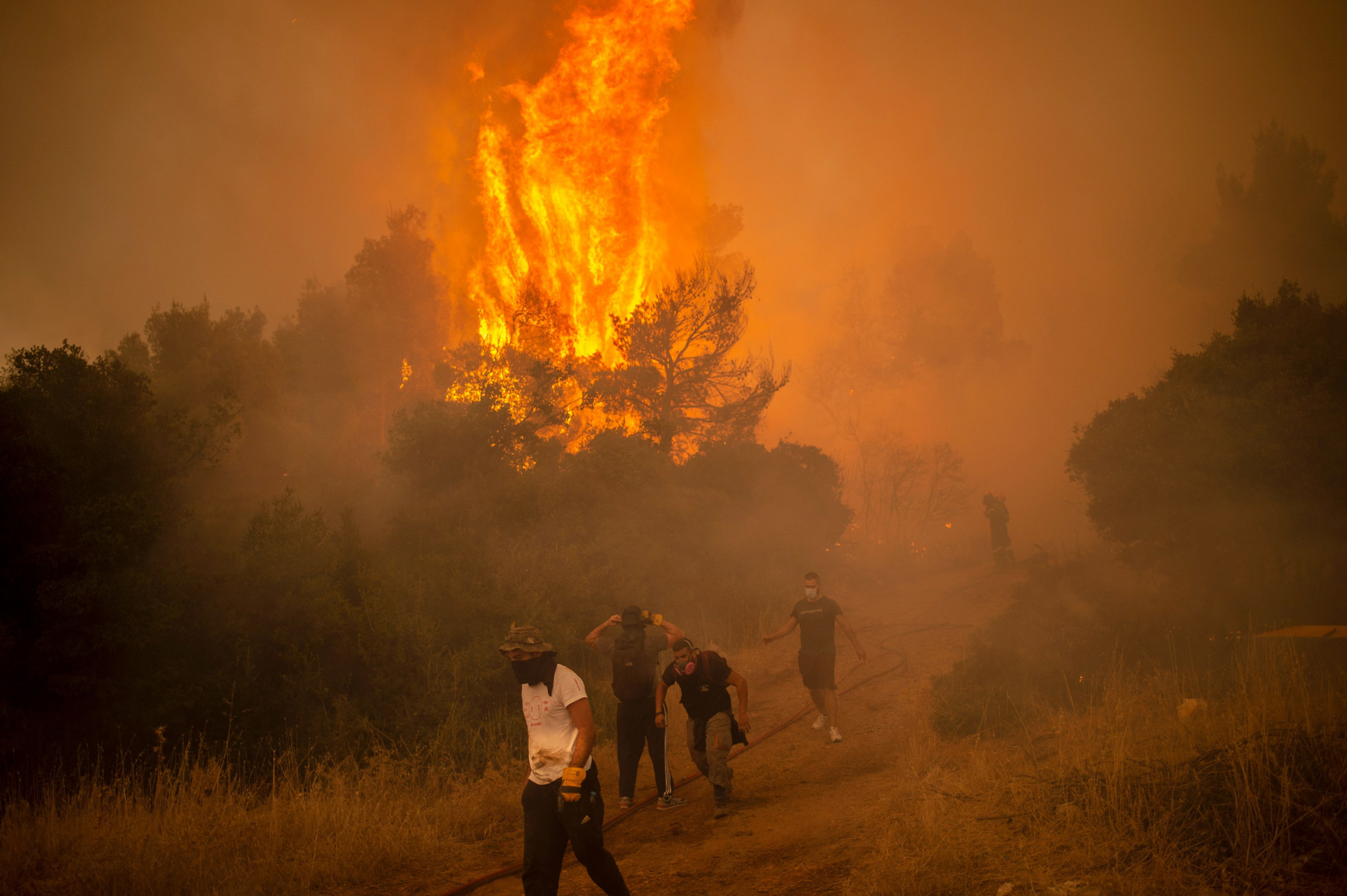 The wildfires that have raged across Greece have forced GAMMA to move the European MMA Championships from Lamia ©Getty Images