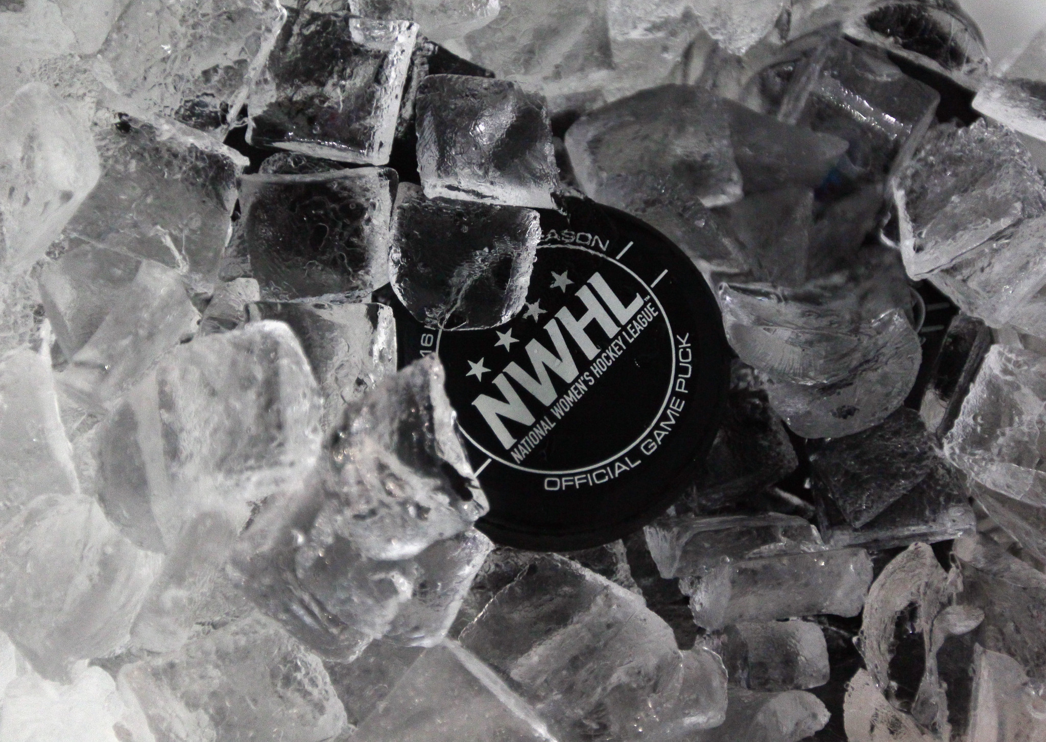 NWHL has name changed to Premier Hockey Federation