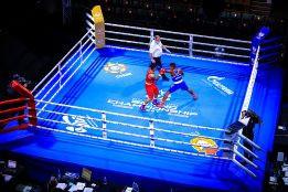 World champions make strong start at World Military Boxing Championships