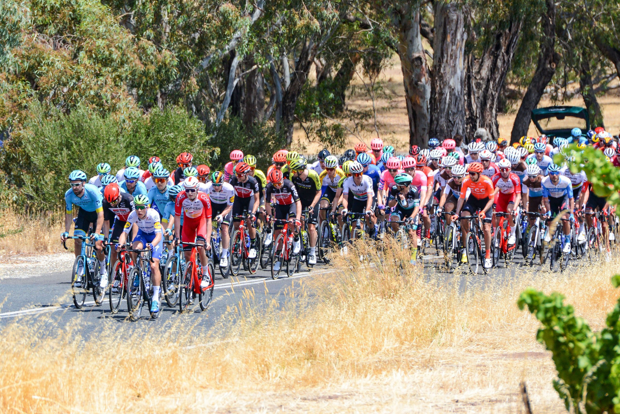 Tour Down Under cancelled for second successive year due to COVID-19