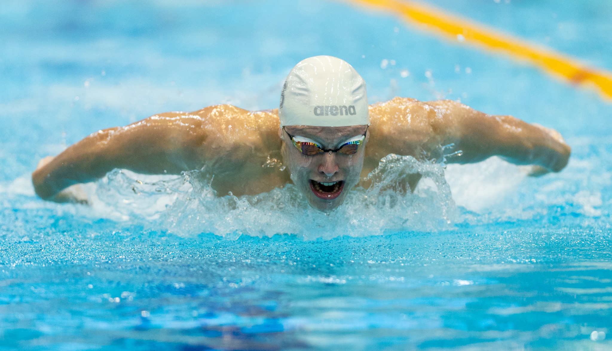 Stellar field lines up for second stage of International Swimming Federation World Cup