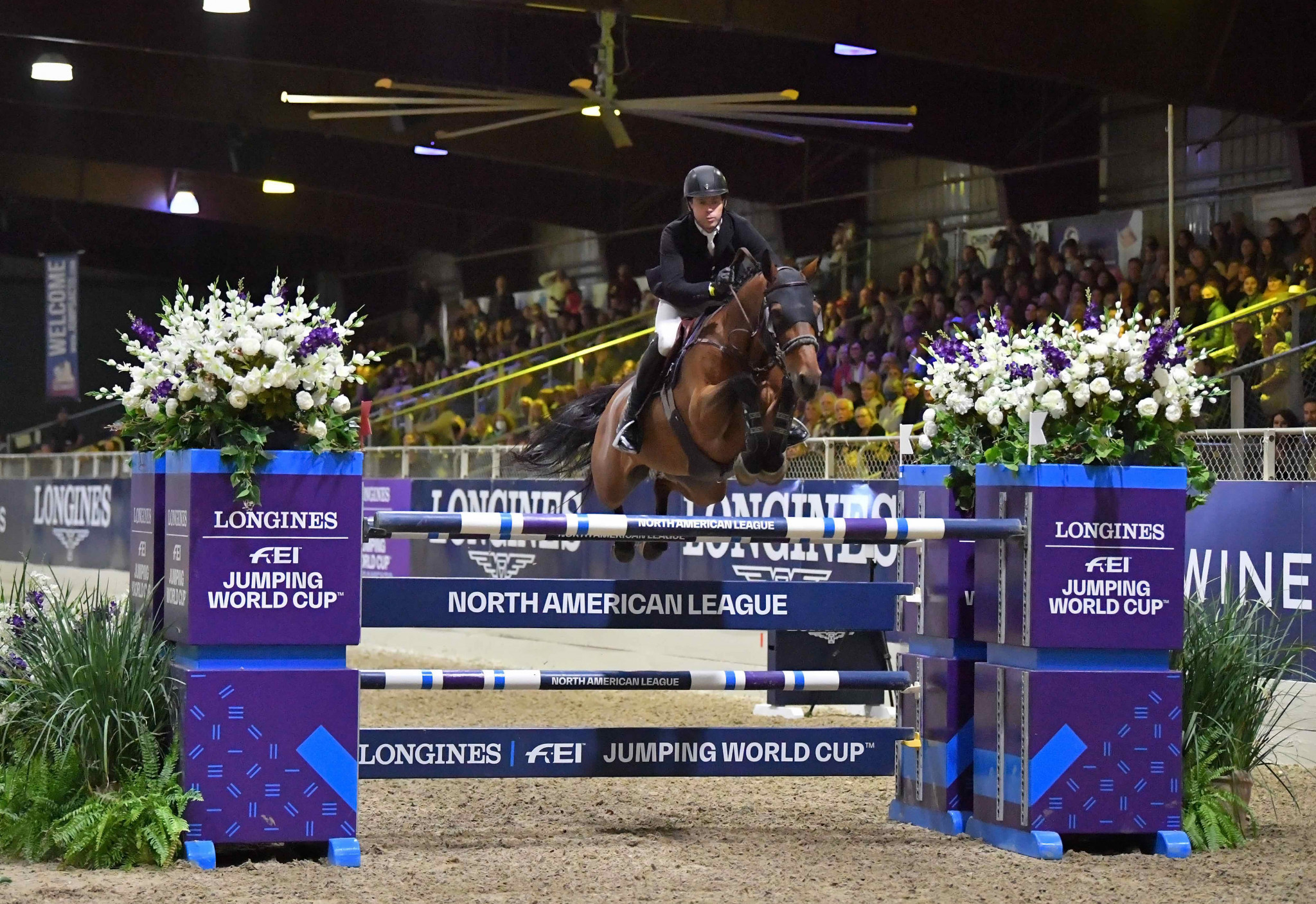 Irishman Swail rides to second Jumping World Cup North American League victory in a row