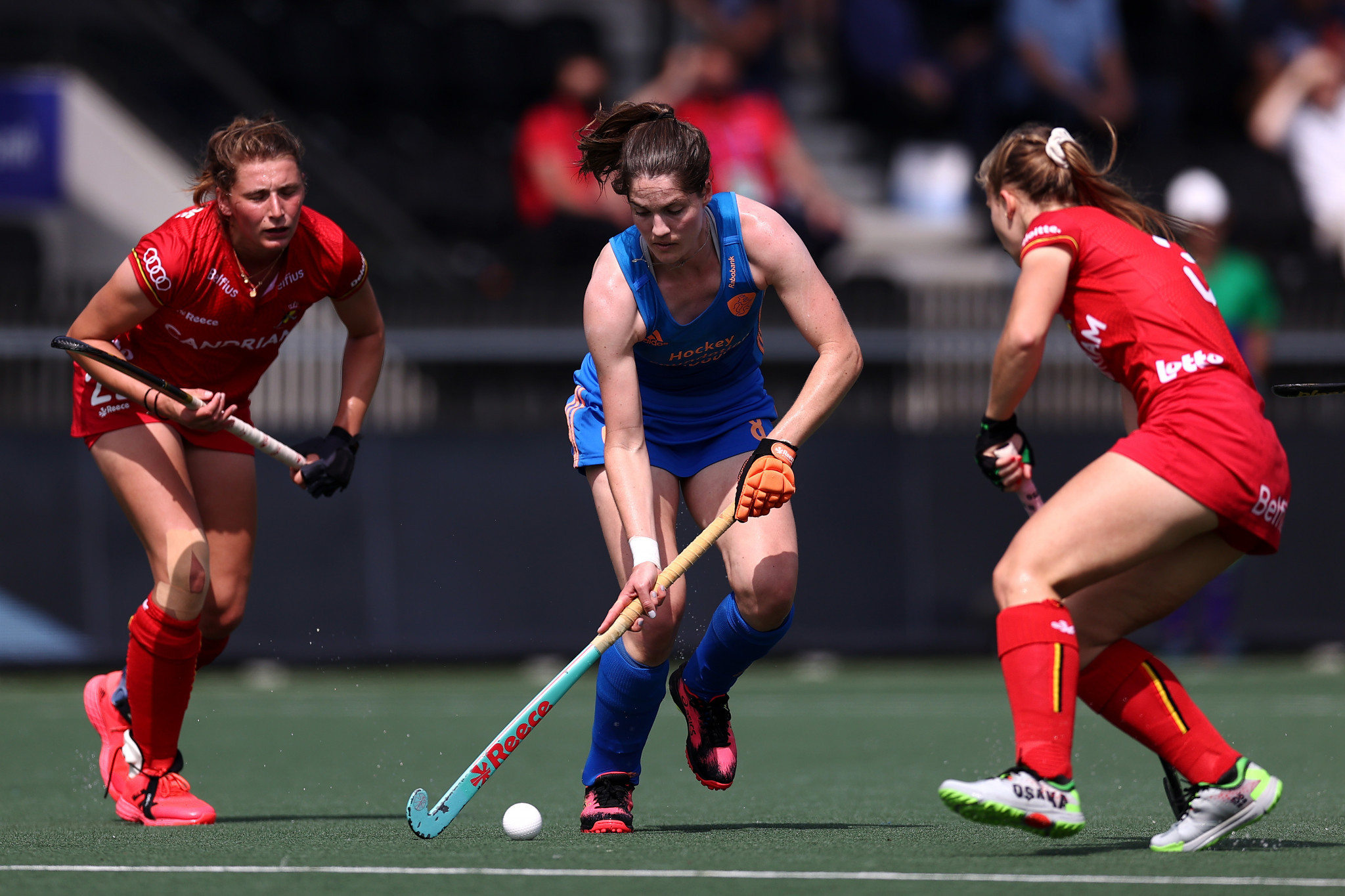 The Netherlands knocked Belgium out of the European Championship earlier this year ©Getty Images