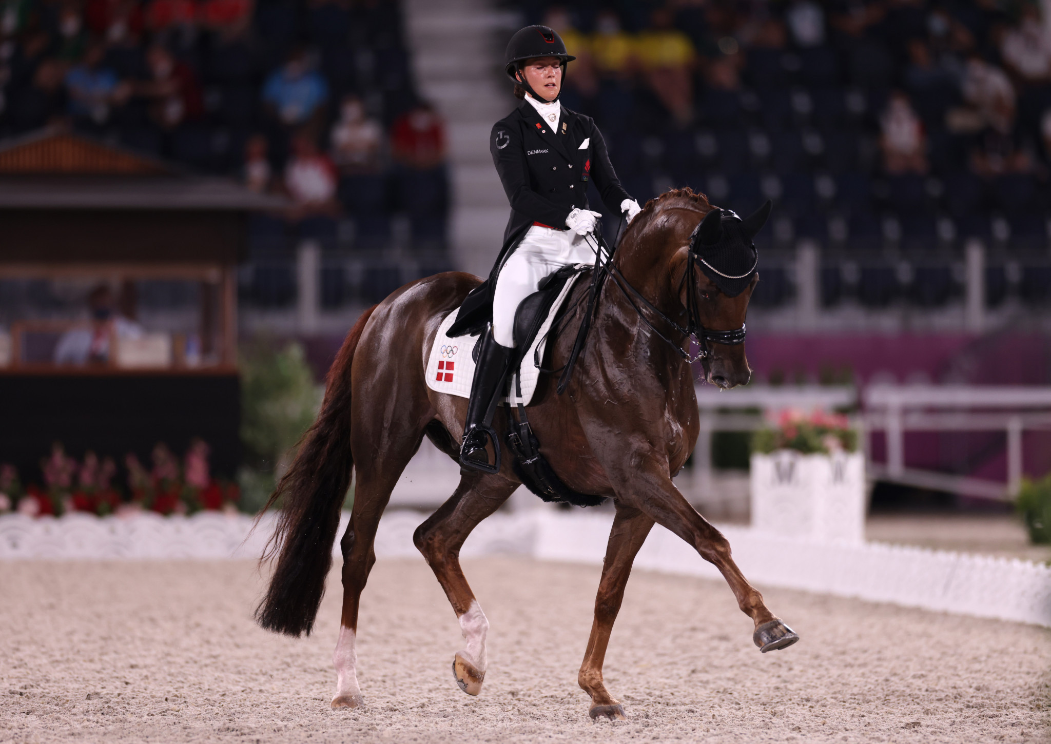 Dufour headlines strong field at Dressage World Cup opener in Herning