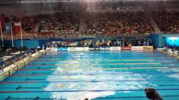 Three members of the FINA Doping Control Review Board have reportedly resigned ©Wikipedia